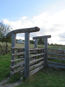 Old cattle yards