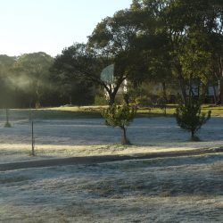 Frosty mornings